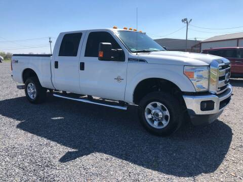 2014 Ford F-250 Super Duty for sale at RAYMOND TAYLOR AUTO SALES in Fort Gibson OK