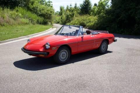 1976 Alfa Romeo Spider for sale at Classic Car Deals in Cadillac MI