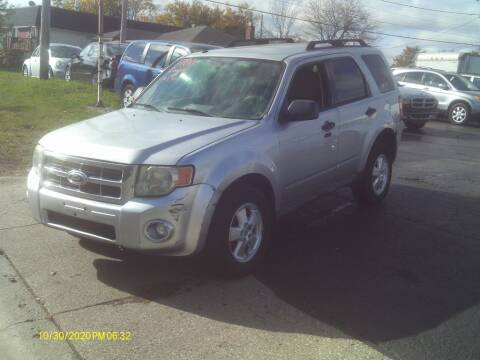 2010 Ford Escape for sale at Flag Motors in Columbus OH