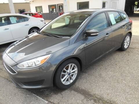 2016 Ford Focus for sale at Unity Motors LLC in Jenison MI