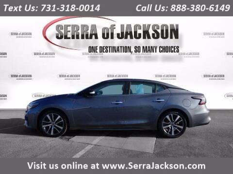 2019 Nissan Maxima for sale at Serra Of Jackson in Jackson TN
