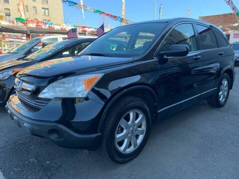 2008 Honda CR-V for sale at Gallery Auto Sales in Bronx NY