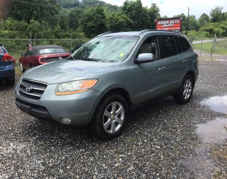 2008 Hyundai Santa Fe for sale at Arden Auto Outlet in Arden NC