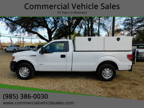 2014 Ford F-150 for sale at Commercial Vehicle Sales in Ponchatoula LA