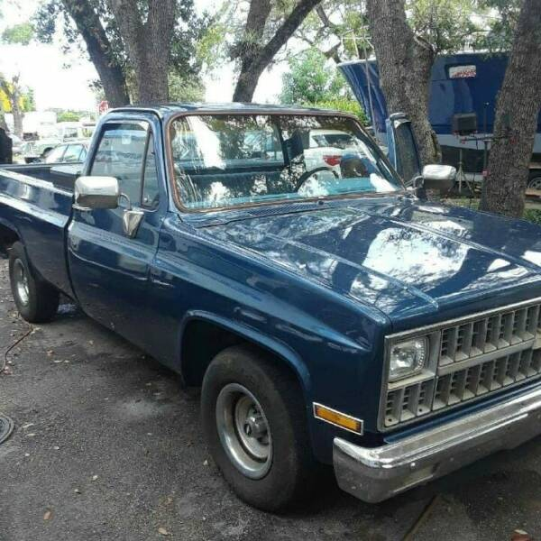 1981 Chevrolet C/K 10 Series for sale at Car Mart Leasing & Sales in Hollywood FL