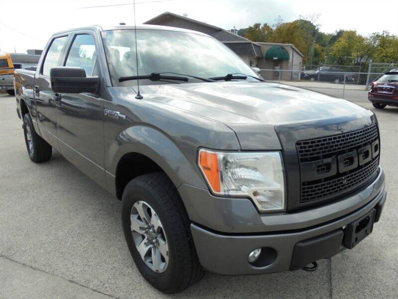 2014 Ford F-150 for sale at PIONEER AUTO SALES LLC in Cleveland TN
