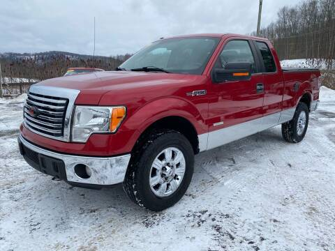 2011 Ford F-150 for sale at Pine Grove Auto Sales LLC in Russell PA