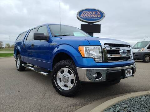 2013 Ford F-150 for sale at Monkey Motors in Faribault MN