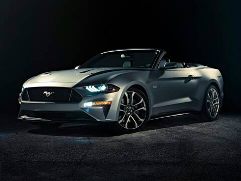 2019 Ford Mustang for sale at Your First Vehicle in Miami FL