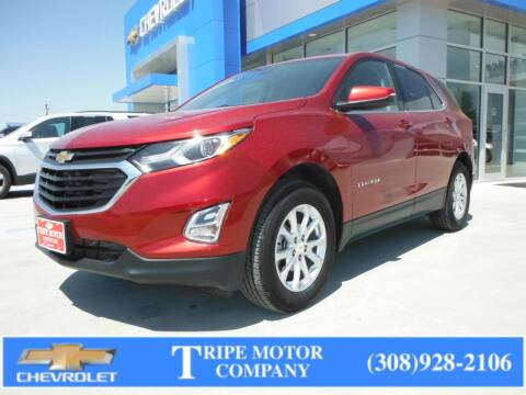 2019 Chevrolet Equinox for sale at Tripe Motor Company in Alma NE