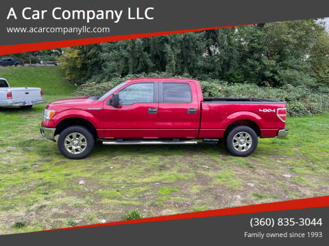 2009 Ford F-150 for sale at A Car Company LLC in Washougal WA