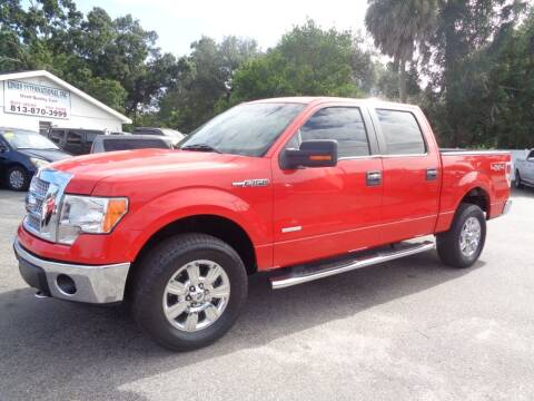 2011 Ford F-150 for sale at Linus International Inc in Tampa FL