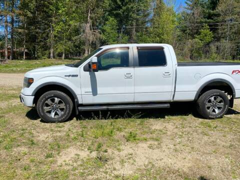 2013 Ford F-150 for sale at Hillside Motor Sales in Coldwater MI