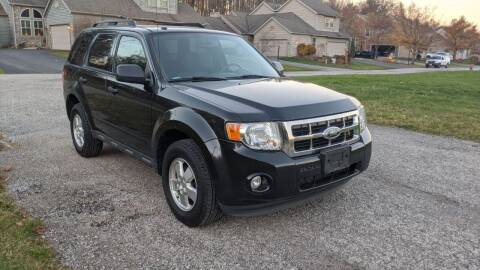 2011 Ford Escape for sale at Newport Auto Group Boardman in Boardman OH