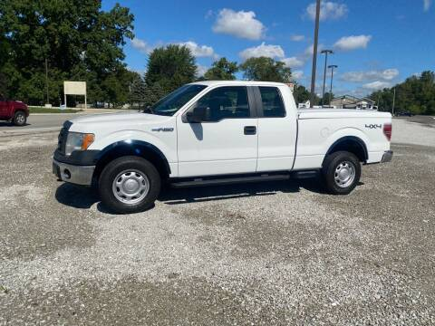 2012 Ford F-150 for sale at MOES AUTO SALES in Spiceland IN