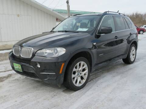 2013 BMW X5 for sale at Low Cost Cars in Circleville OH