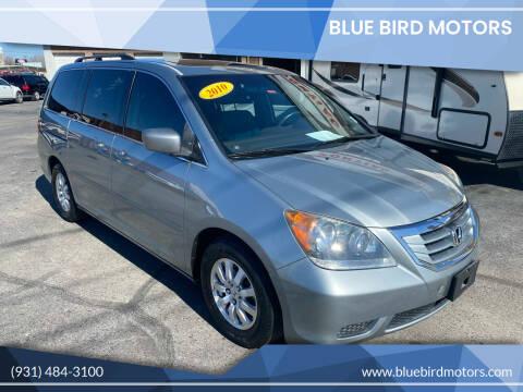 2010 Honda Odyssey for sale at Blue Bird Motors in Crossville TN