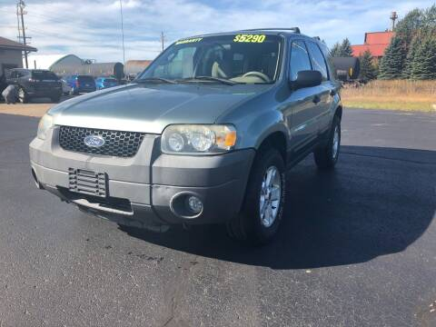 2005 Ford Escape for sale at Mike's Budget Auto Sales in Cadillac MI
