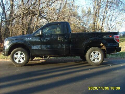 2010 Ford F-150 for sale at Northport Motors LLC in New London WI