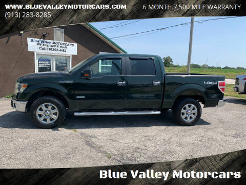 2014 Ford F-150 for sale at Blue Valley Motorcars in Stilwell KS