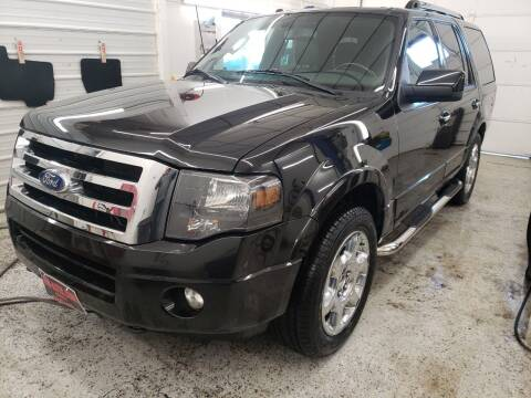 2013 Ford Expedition for sale at Jem Auto Sales in Anoka MN