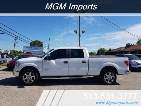 2014 Ford F-150 for sale at MGM Imports in Cincannati OH