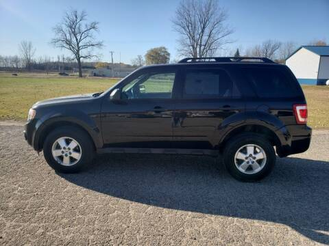2011 Ford Escape for sale at Steve Winnie Auto Sales in Edmore MI