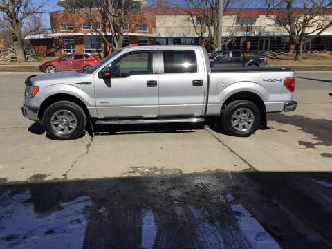 2012 Ford F-150 for sale at Mulder Auto Tire and Lube in Orange City IA
