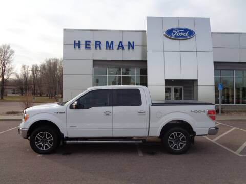 2011 Ford F-150 for sale at Herman Motors in Luverne MN