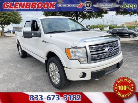2010 Ford F-150 for sale at Glenbrook Dodge Chrysler Jeep Ram and Fiat in Fort Wayne IN