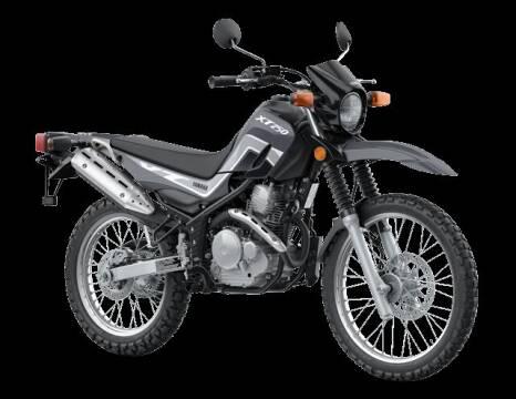 2022 Yamaha XT 250 for sale at GT Toyz Motor Sports & Marine - GT Toyz Motorsports in Halfmoon NY