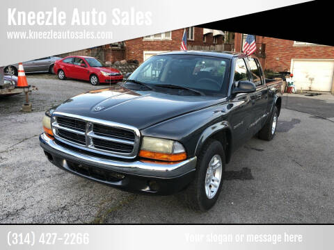 2002 Dodge Dakota for sale at Kneezle Auto Sales in Saint Louis MO