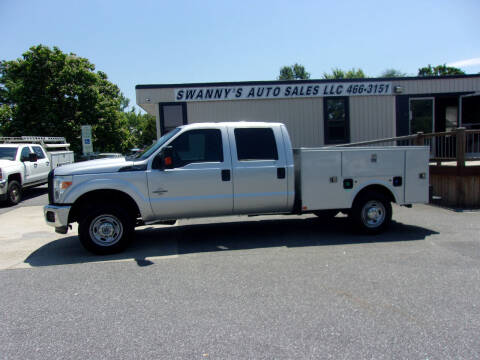 2015 Ford F-250 Super Duty for sale at Swanny's Auto Sales in Newton NC