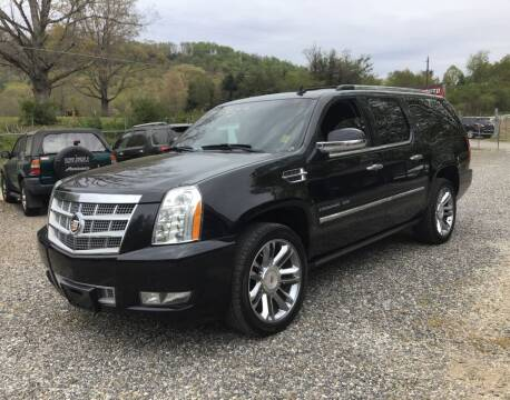 2011 Cadillac Escalade ESV for sale at Arden Auto Outlet in Arden NC