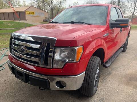 2010 Ford F-150 for sale at 51 Auto Sales Ltd in Portage WI