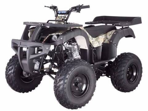 2020 Tao Rhino 250 for sale at Buhs Auto Sales in Kenosha WI
