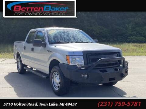 2014 Ford F-150 for sale at Betten Baker Preowned Center in Twin Lake MI