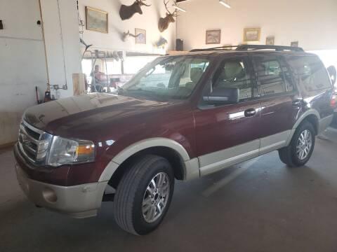 2010 Ford Expedition for sale at PYRAMID MOTORS - Pueblo Lot in Pueblo CO