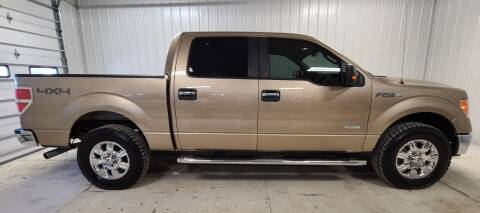 2011 Ford F-150 for sale at Ubetcha Auto in St. Paul NE