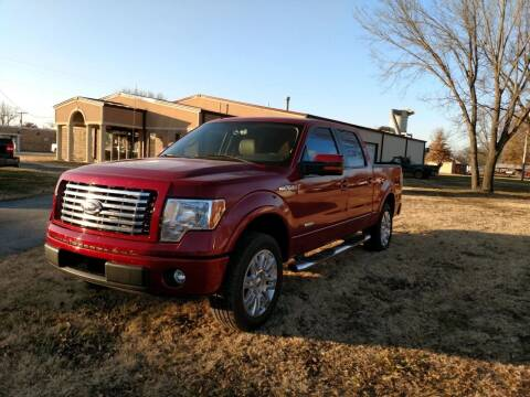 2011 Ford F-150 for sale at KW TRUCKING OF KS in Saint Paul KS