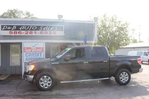2013 Ford F-150 for sale at D & B Auto Sales LLC in Washington MI