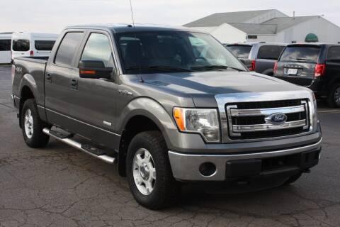 2014 Ford F-150 for sale at LJ Motors in Jackson MI