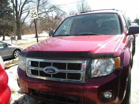 2008 Ford Escape for sale at ZJ's Custom Auto Inc. in Roseville MI