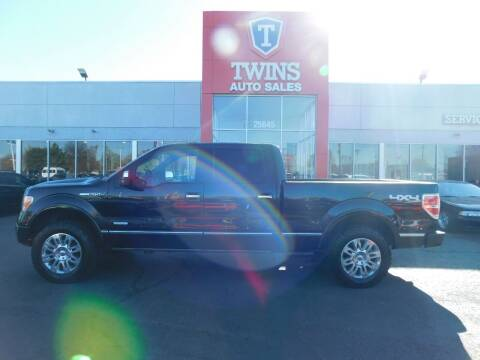 2012 Ford F-150 for sale at Twins Auto Sales Inc Redford 1 in Redford MI