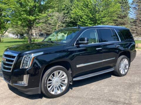 2017 Cadillac Escalade for sale at The AutoFinance Center in Rochester MN