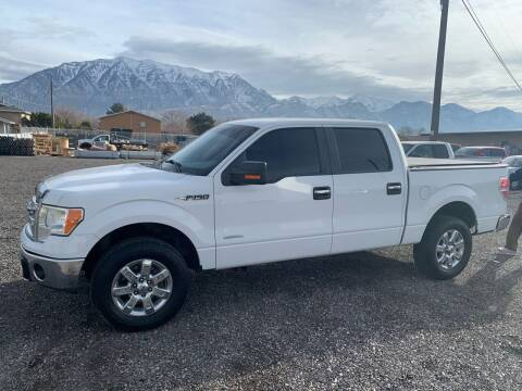 2014 Ford F-150 for sale at Street Dreams LLC in Orem UT