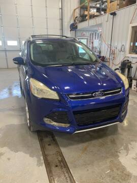 2014 Ford Escape for sale at RDJ Auto Sales in Kerkhoven MN