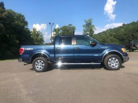 2014 Ford F-150 for sale at BARD'S AUTO SALES in Needmore PA