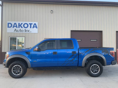 2011 Ford F-150 for sale at Dakota Auto Inc. in Dakota City NE