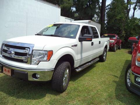 2014 Ford F-150 for sale at H and H Truck Center in Newport News VA